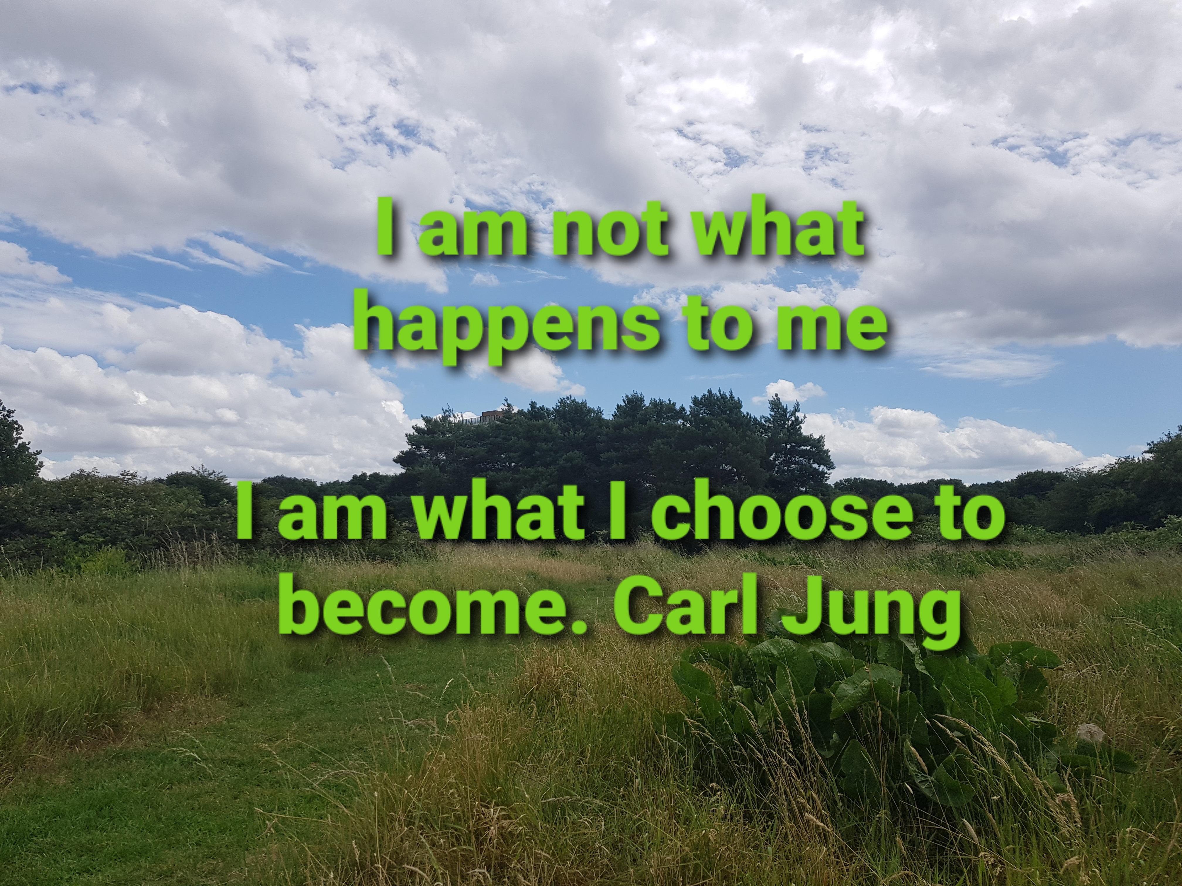 I am not what happened to me, I am what I choose to become. [3024:4024] Carl Gustav Jung