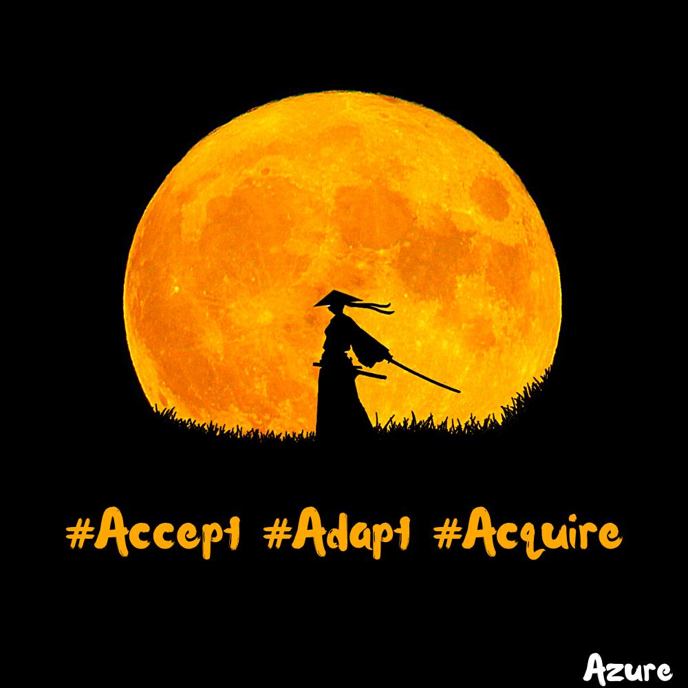 Accept.Adapt.Acquire – Original Quote [1000×1000]