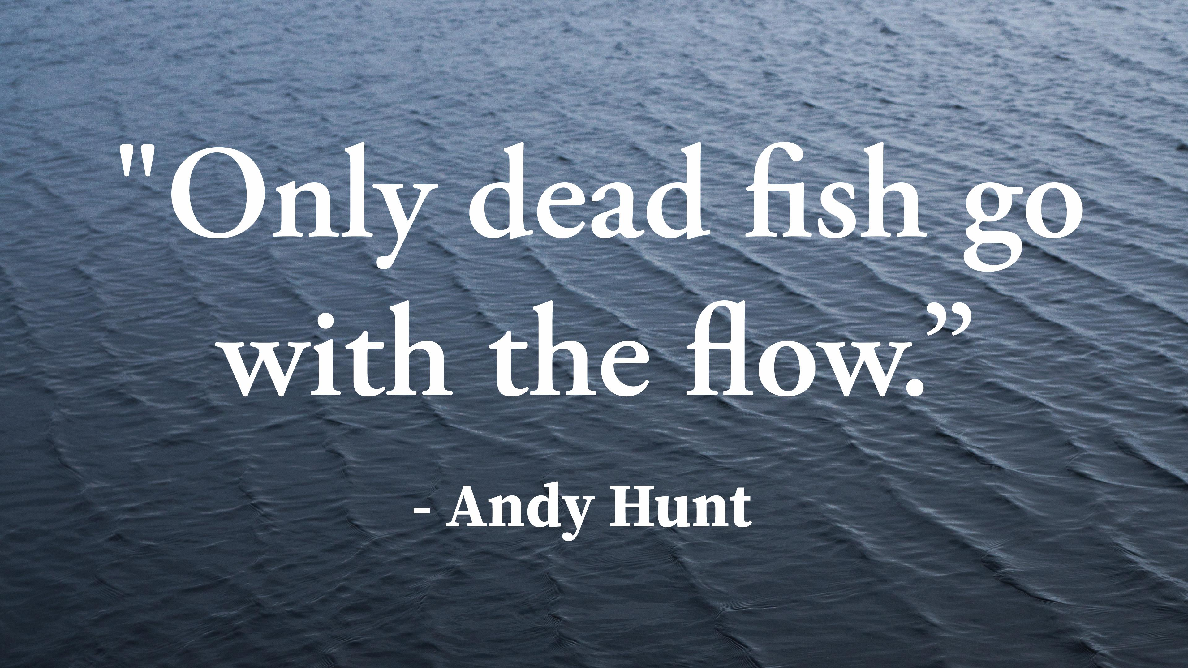 """Only dead fish go with the flow."" – Andy Hunt [3840 x 2160]"