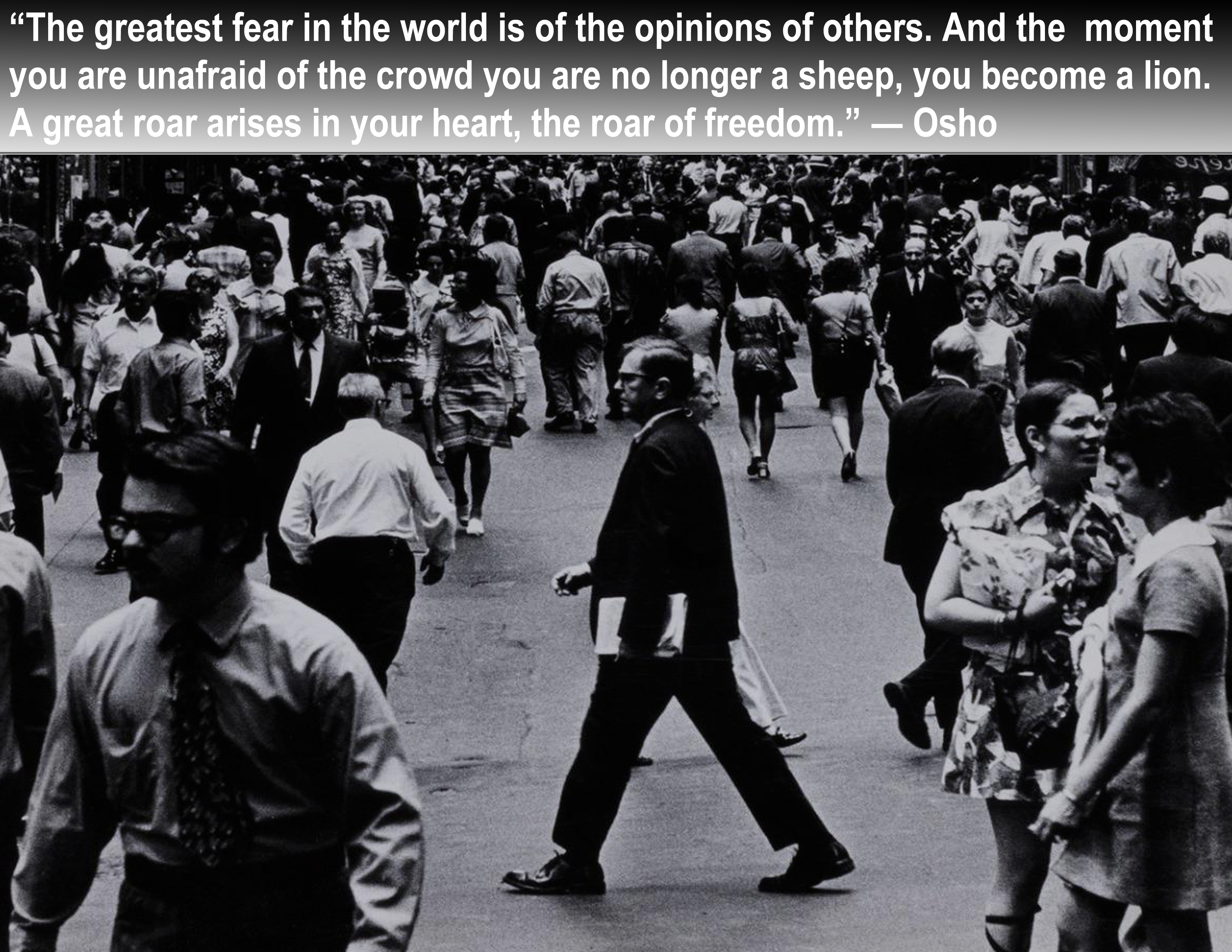"""The greatest fear in the world is of the opinions of others. And the moment you are unafraid of the crowd you are no longer a sheep, you become a lion. A great roar arises in your heart, the roar of freedom."" ― Osho [3300×2550]"