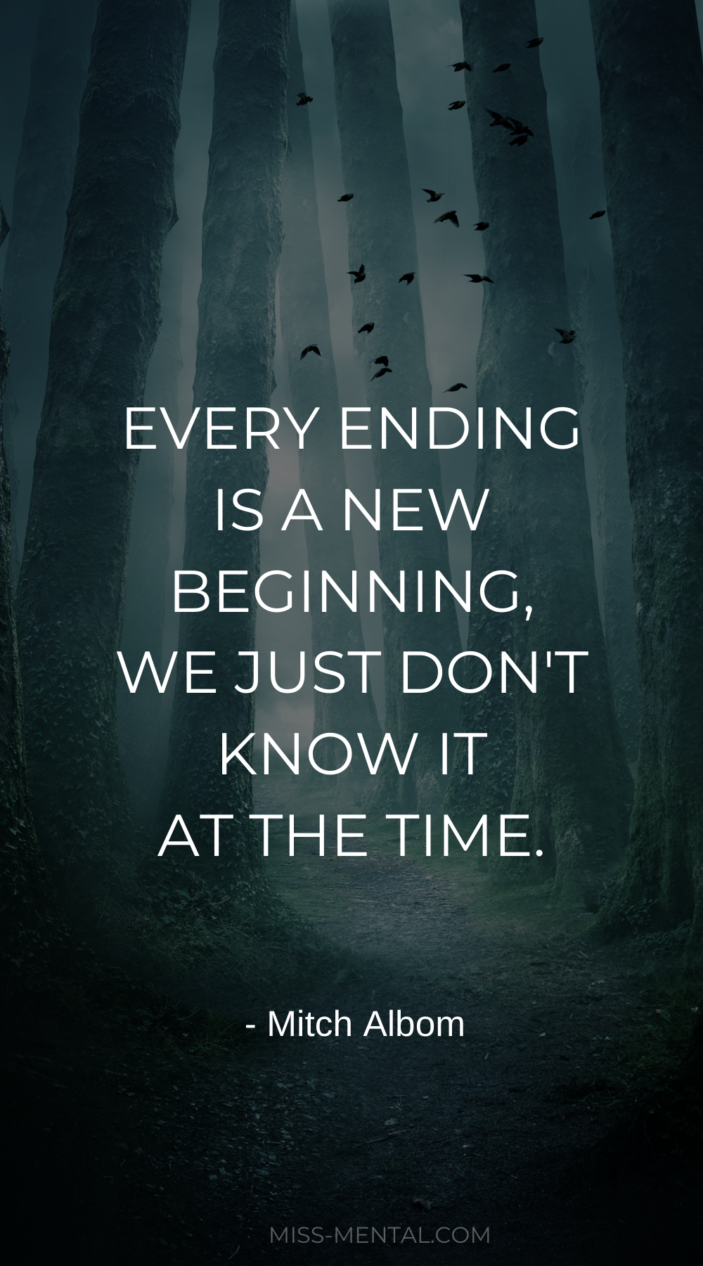 Every ending is a new beginning, we just don't know it at the time – Mitch Albom [914×508]