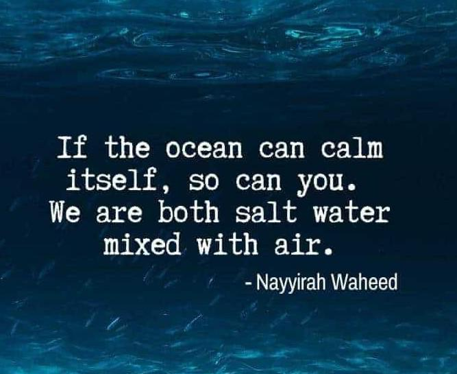 "[Image] ""If the ocean can calm itself, so can you. We are both salt water mixed with air."" ~ Nayyirah Waheed"