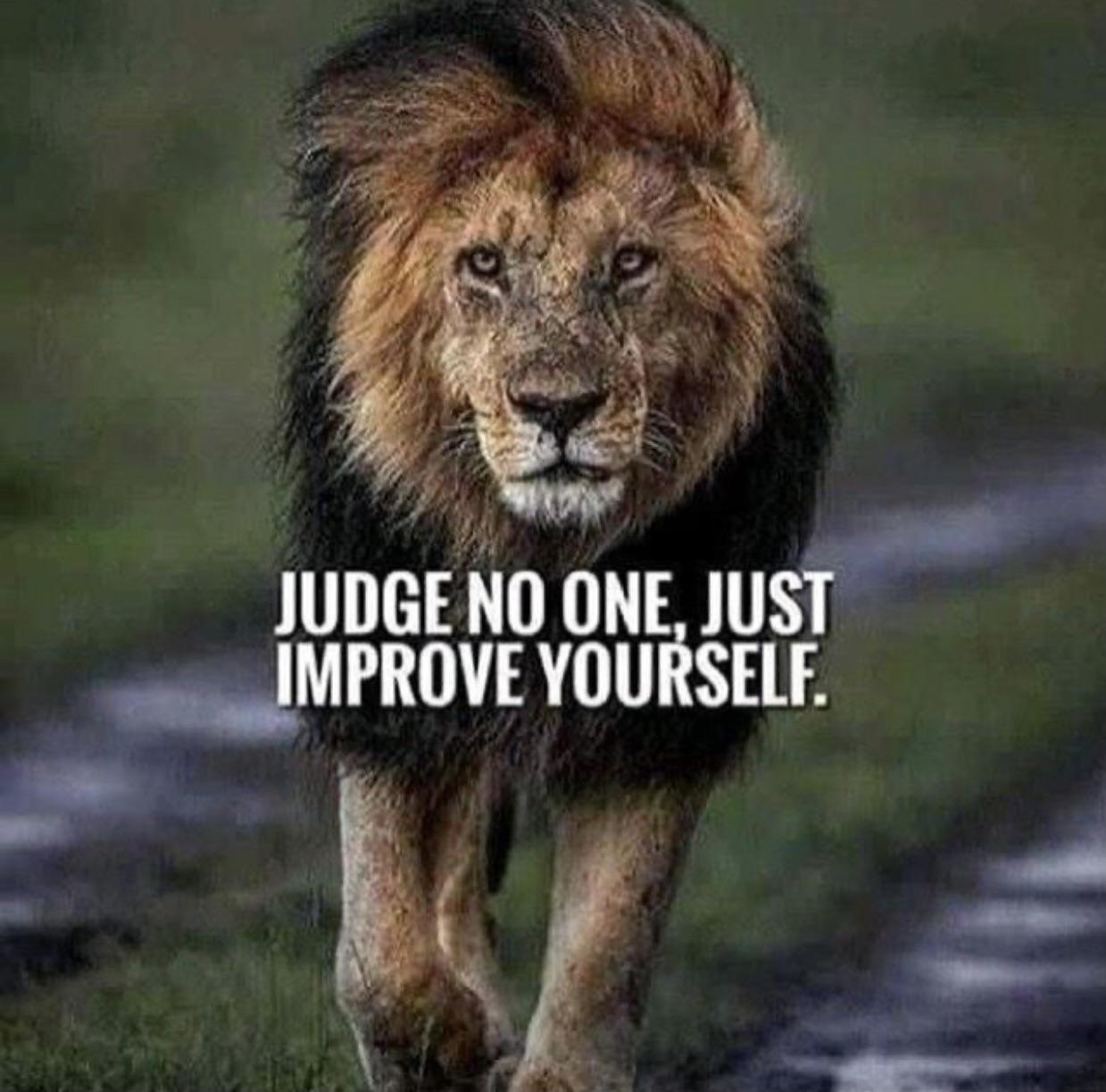 [Image] You do you and don't judge people.