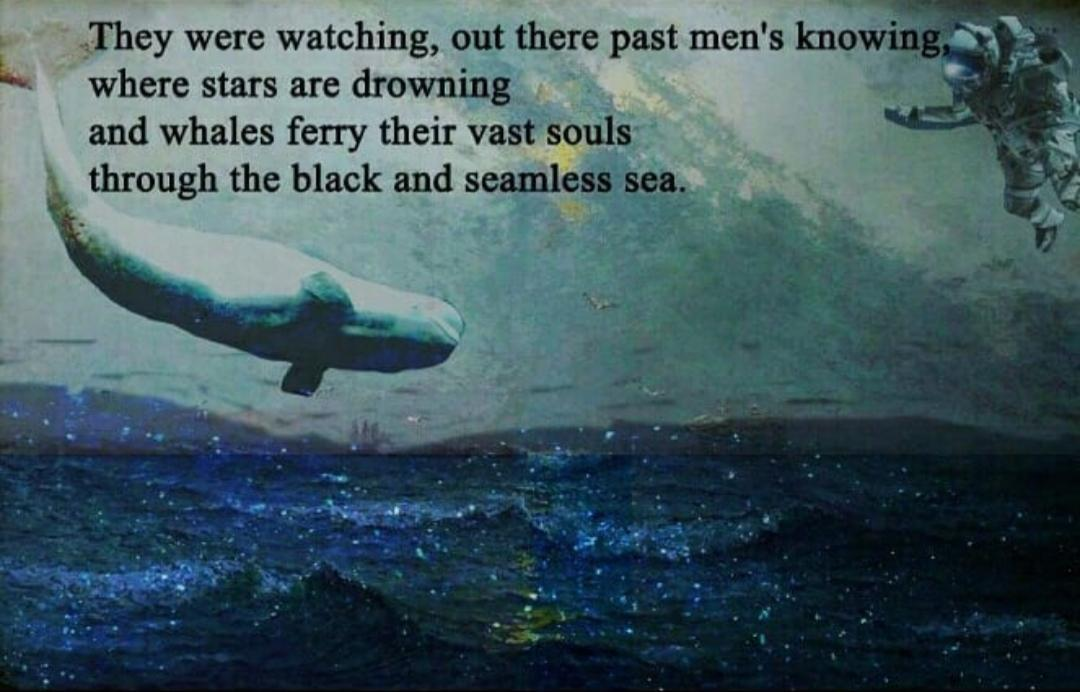 """They were watching, out there past men's knowing, where stars are drowning and whales ferry their vast souls through the black and seamless sea."" – Cormac McCarthy [1080×692]"