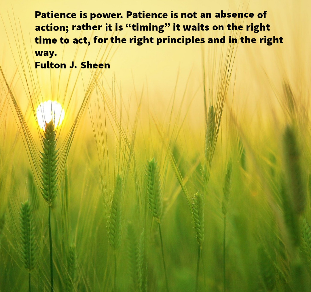 "Patience is power. Patience is not an absence of action; rather it is ""timing"" it waits on the right time to act, for the right principles and in the right way. -Fulton J. Sheen [1080×1012]"