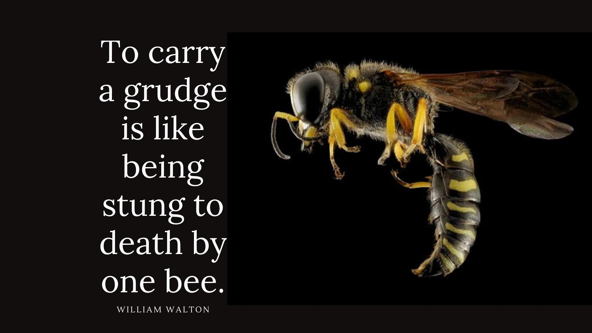 """To carry a grudge is like being stung to death by one bee"" – William Walton [1920×1080]"