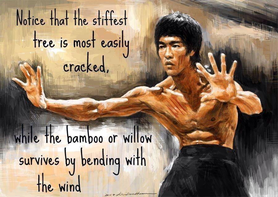 [Image] Just a little Bruce Lee.
