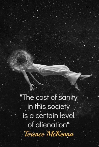 """The cost of sanity in this society is a certain level of alienation"" – Terrence McKenna [400*594]"