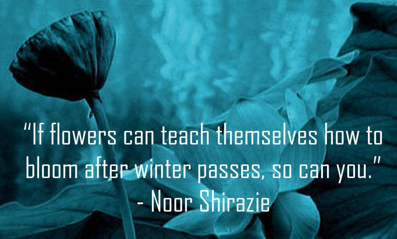 "[Image] ""If flowers can teach themselves how to bloom after winter passes, so can you."" ~ Noor Shirazie"