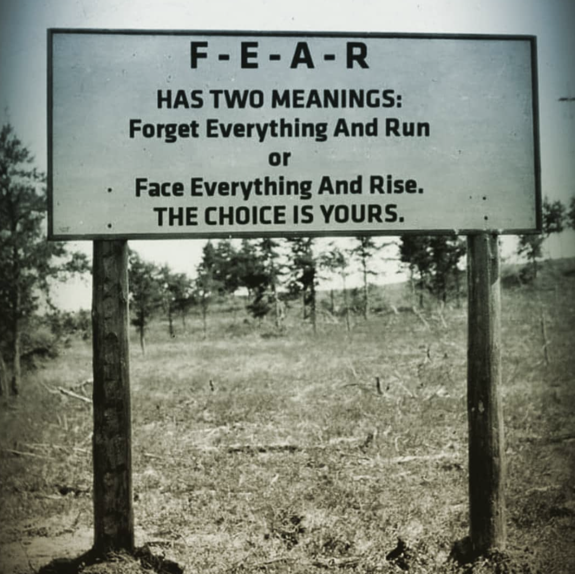 F-E-A-R HAS TWO MEANINGS: Forget Everything And Run or - Face Everything And Rlse. THE CHOICE IS YOURS. https://inspirational.ly