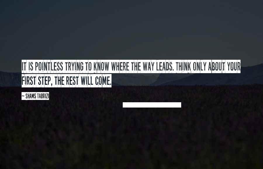 It is pointless trying to know where the way leads. Think only about your first step , the rest will come. -Shams Tabrizi [900×580]