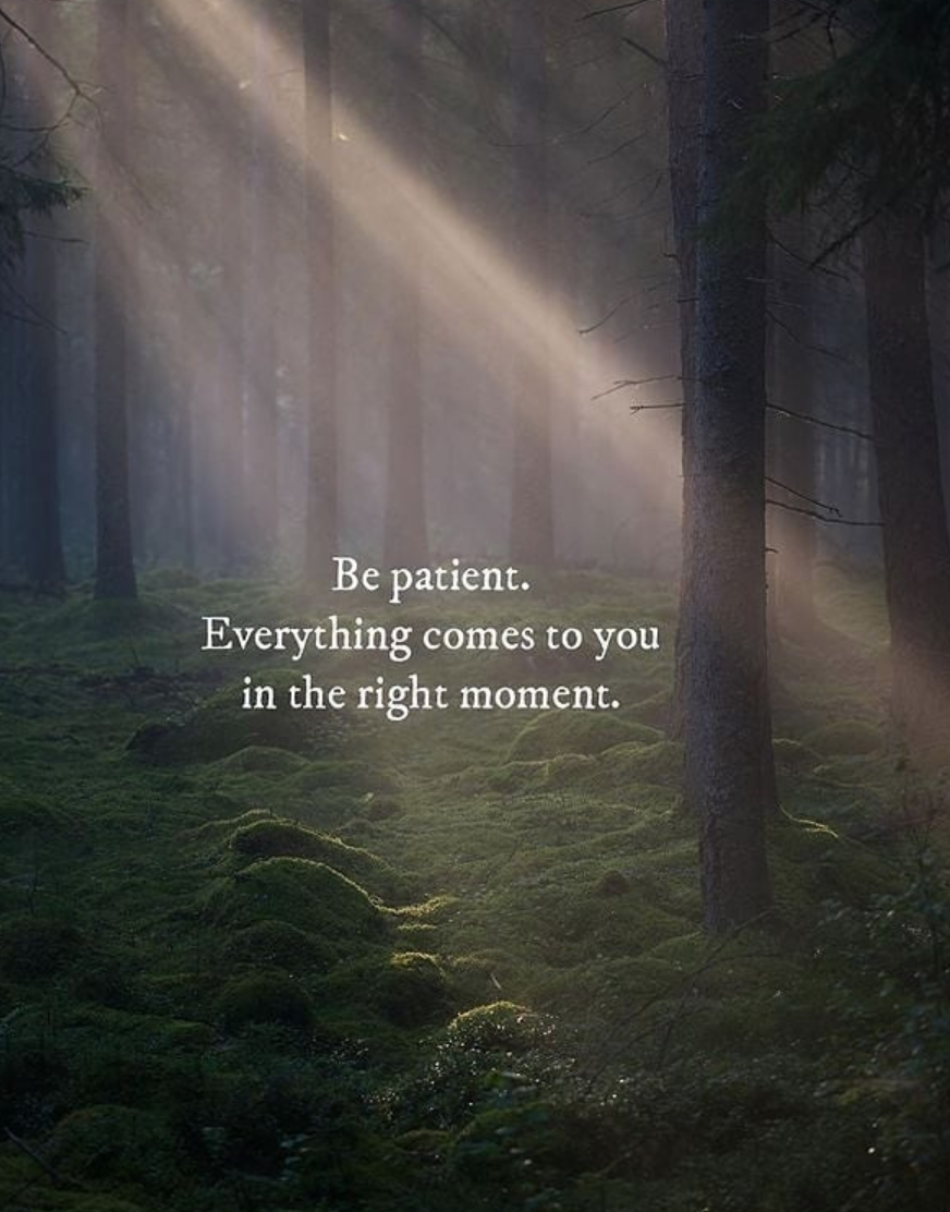 [Image] Be patient. Everything comes to you at the right moment.