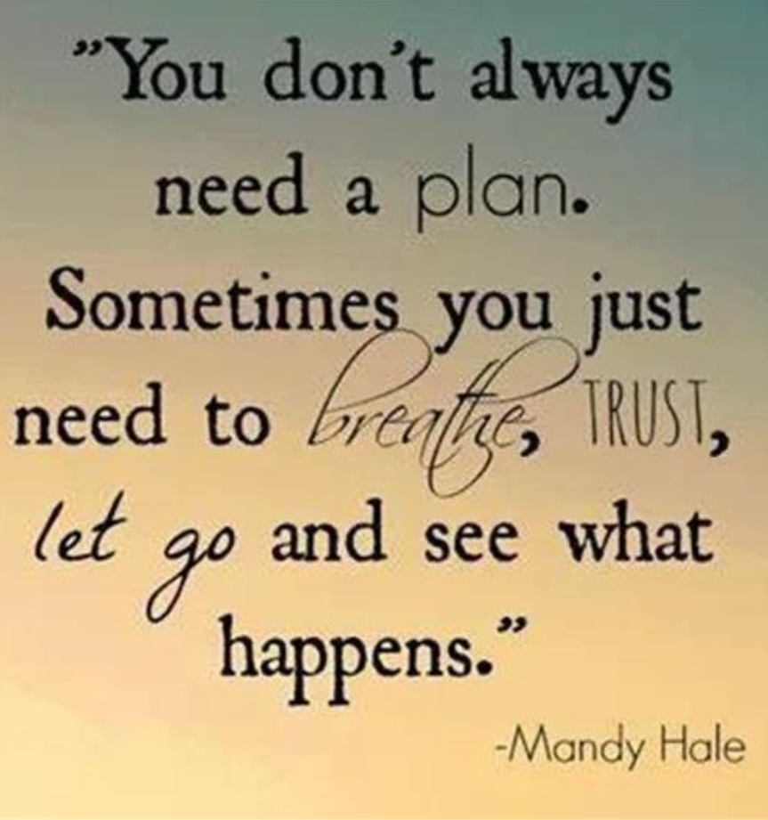 """You don't always need a plan. Sometimes you just need to breathe, trust, let go and see what happens."" -Mandy Hale [863 x 921]"