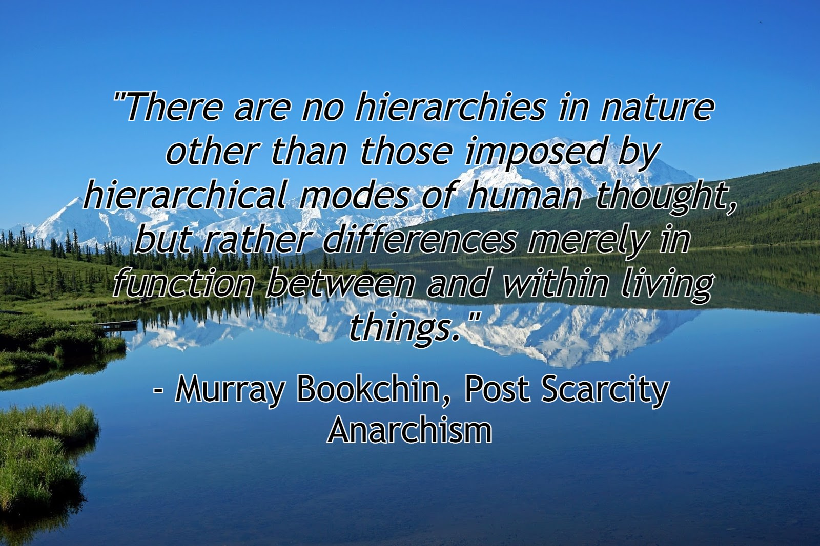 """""""There are no hierarchies in nature other than those imposed by hierarchical modes of human thought…"""" – Bookchin [1600×1066]"""