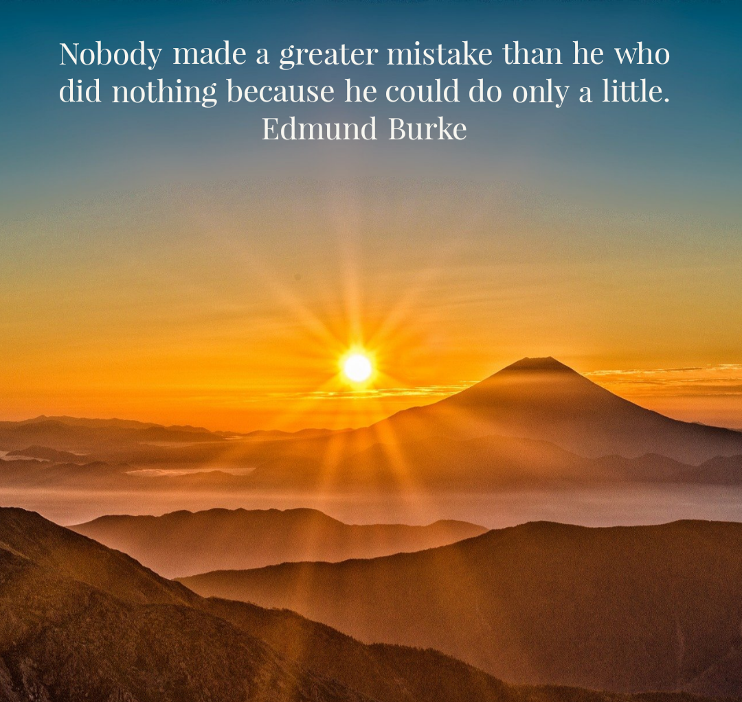 Nobody made a greater mistake than he who did nothing because he could do only a little. Edmund Burke [1080×1023]