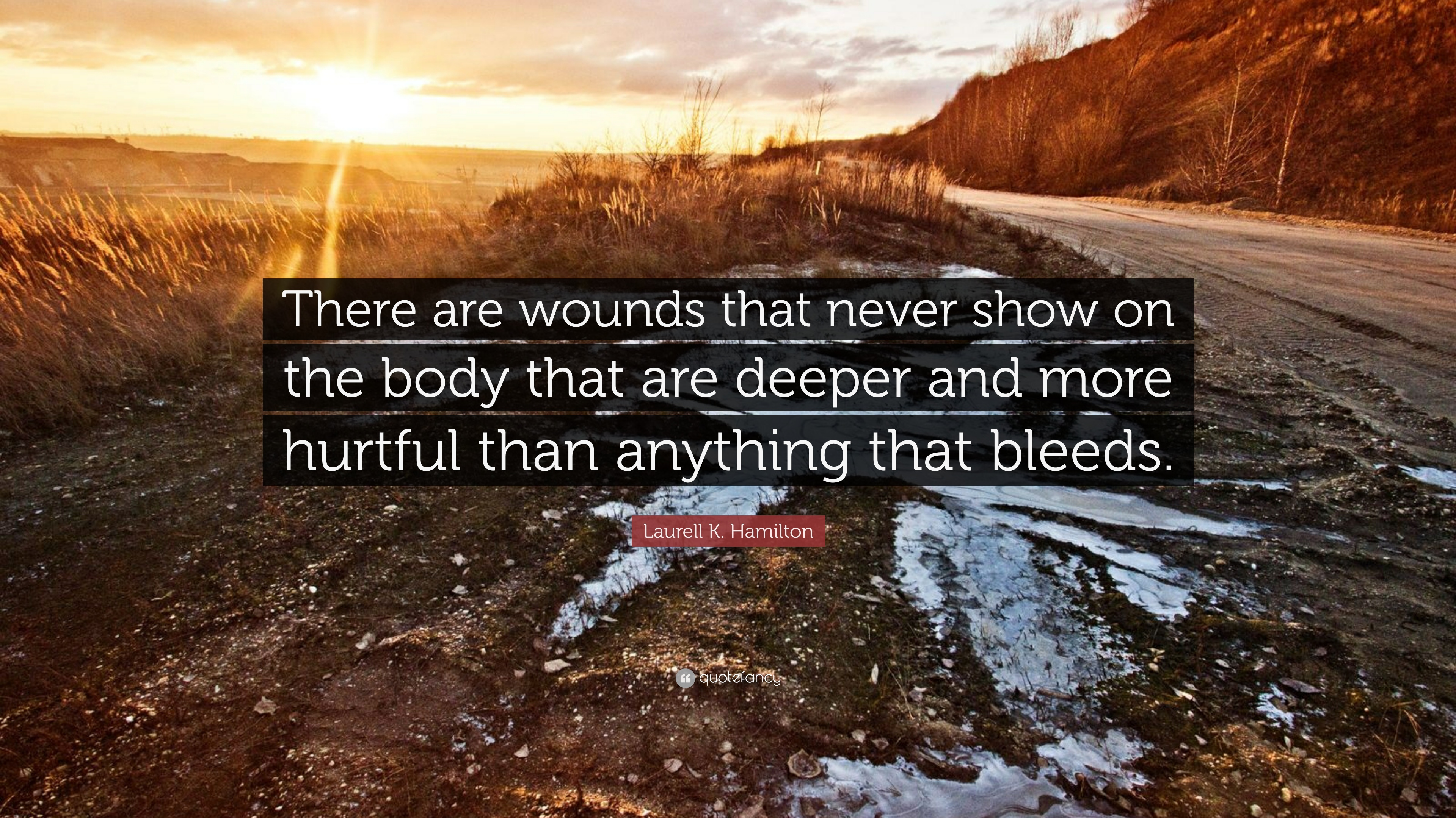 There are wounds that never show on the body that are deeper and more hurtful than anything that bleeds. Laurell K. Hamilton. (3840×2160)