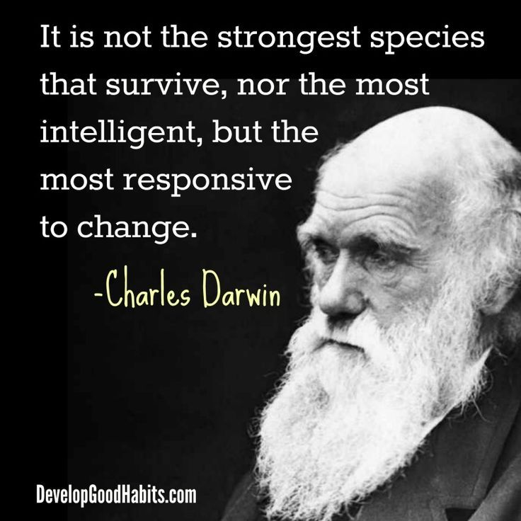[Charles Darwin] It is not the strongest species that survive.. [736 × 736]
