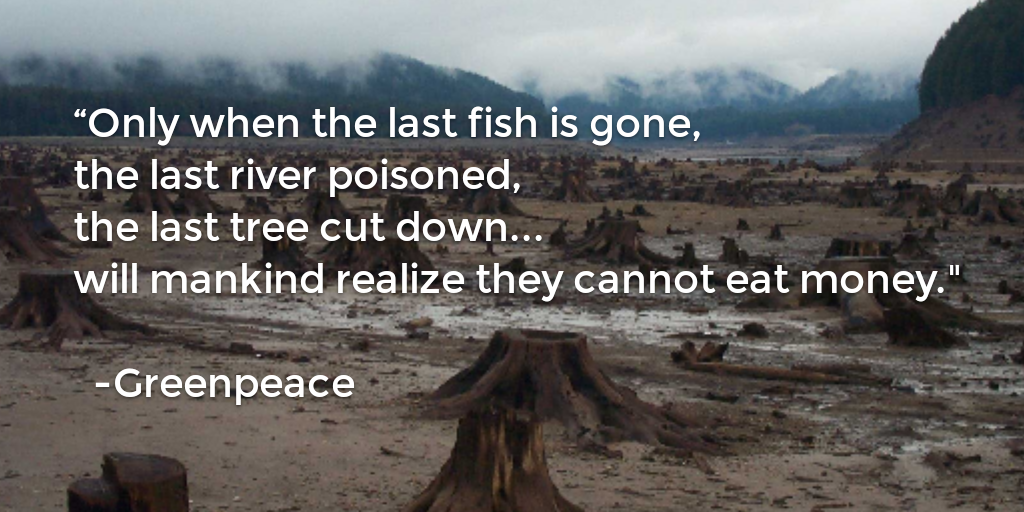 """Only when the last fish is gone, the last river poisoned, the last tree cut down… will mankind realize they cannot eat money."" – Greenpeace [1024×512]"