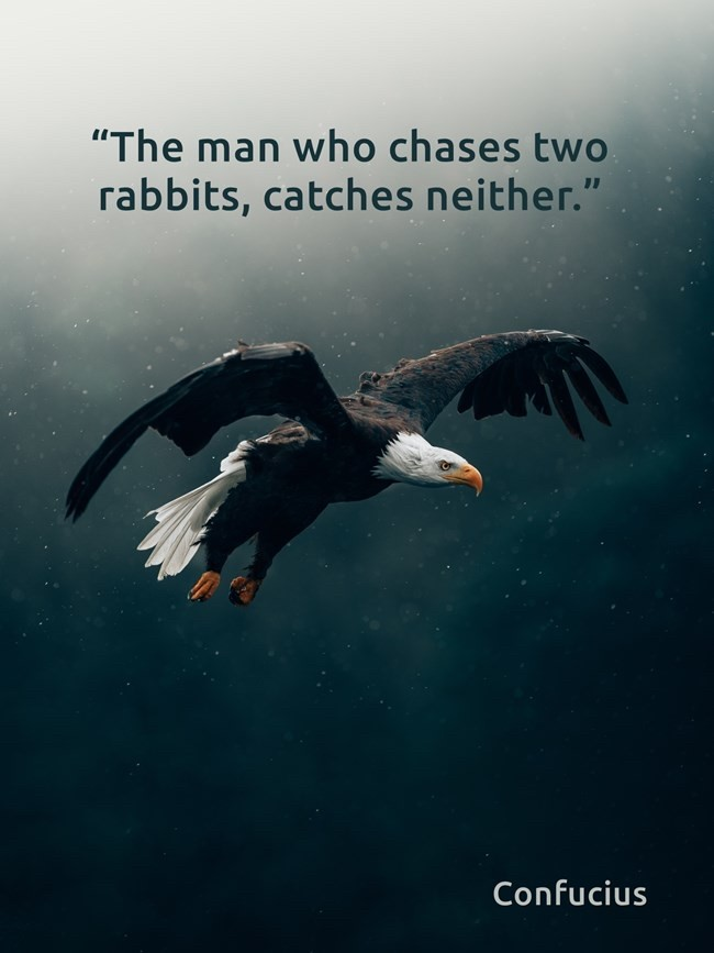 The man who chases two rabbits, catches neither. -Confucius [650 x 867]