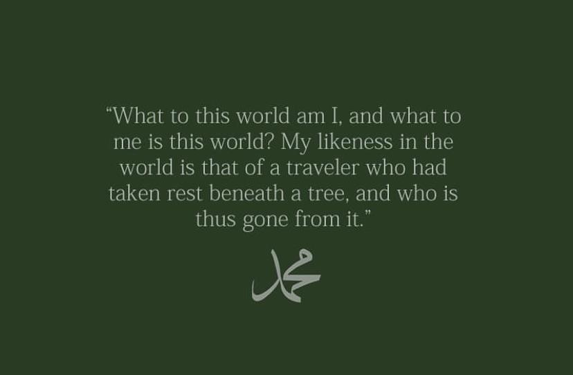 """What to this world am i…"" the prophet muhammad [828×542]"
