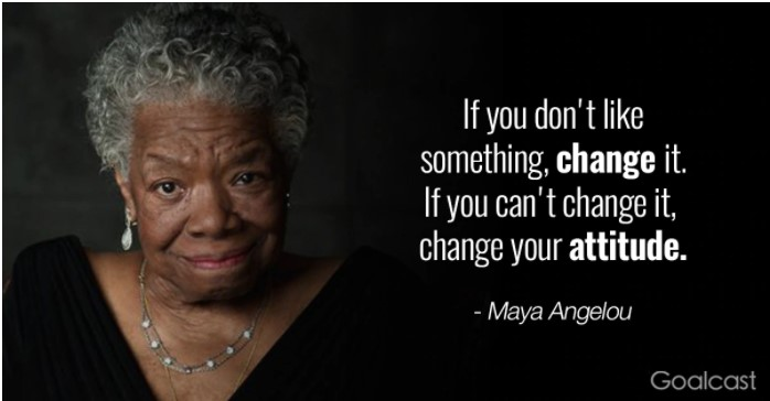 If you don't like something, change it. If you can't change it, change your attitude. by Maya angelou ( 637 X 364 )