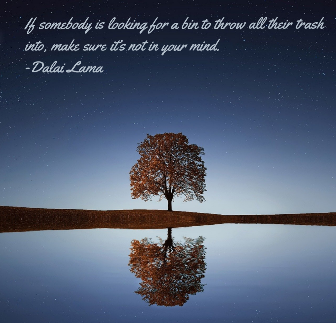 If somebody is looking for a bin to throw all their trash into, make sure it's not in your mind. -Dalai Lama [1078×1035]