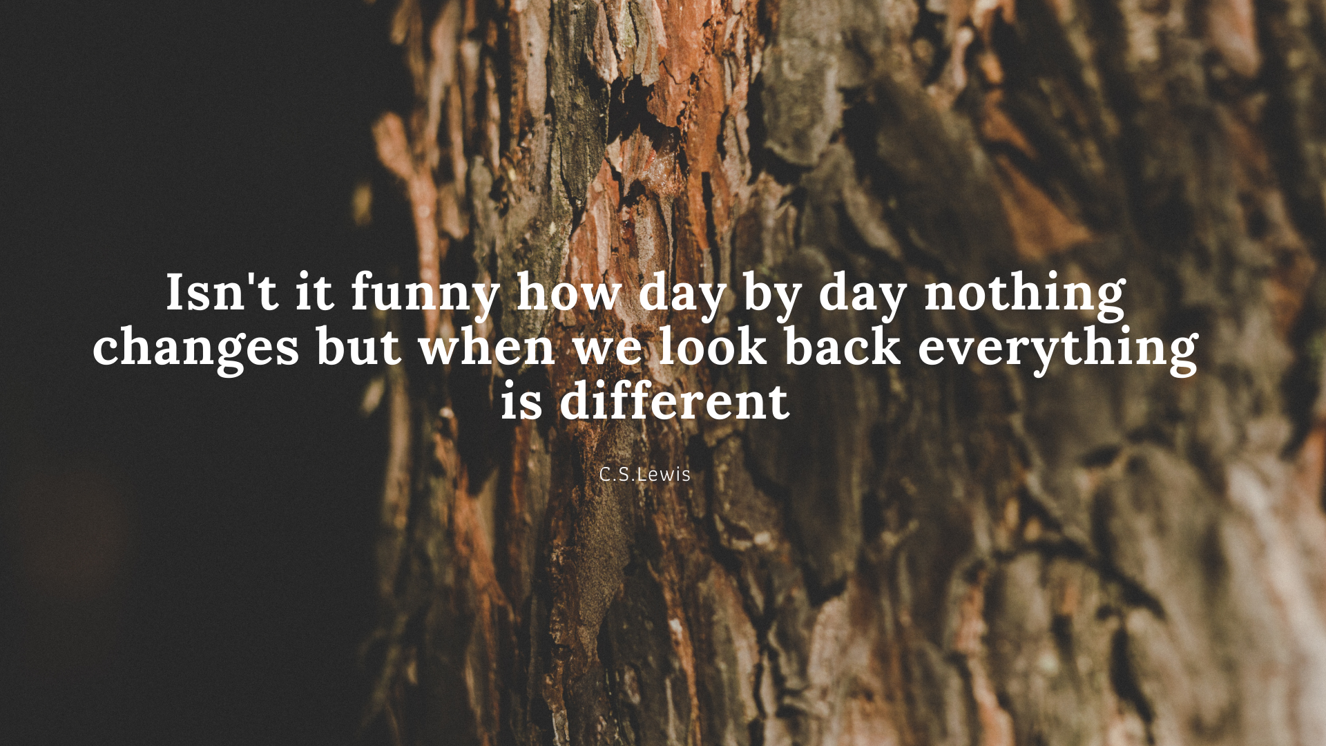 Isn't it funny how day by day nothing changes but when we look back everything is different. – C.S.Lewis[1920×1080]