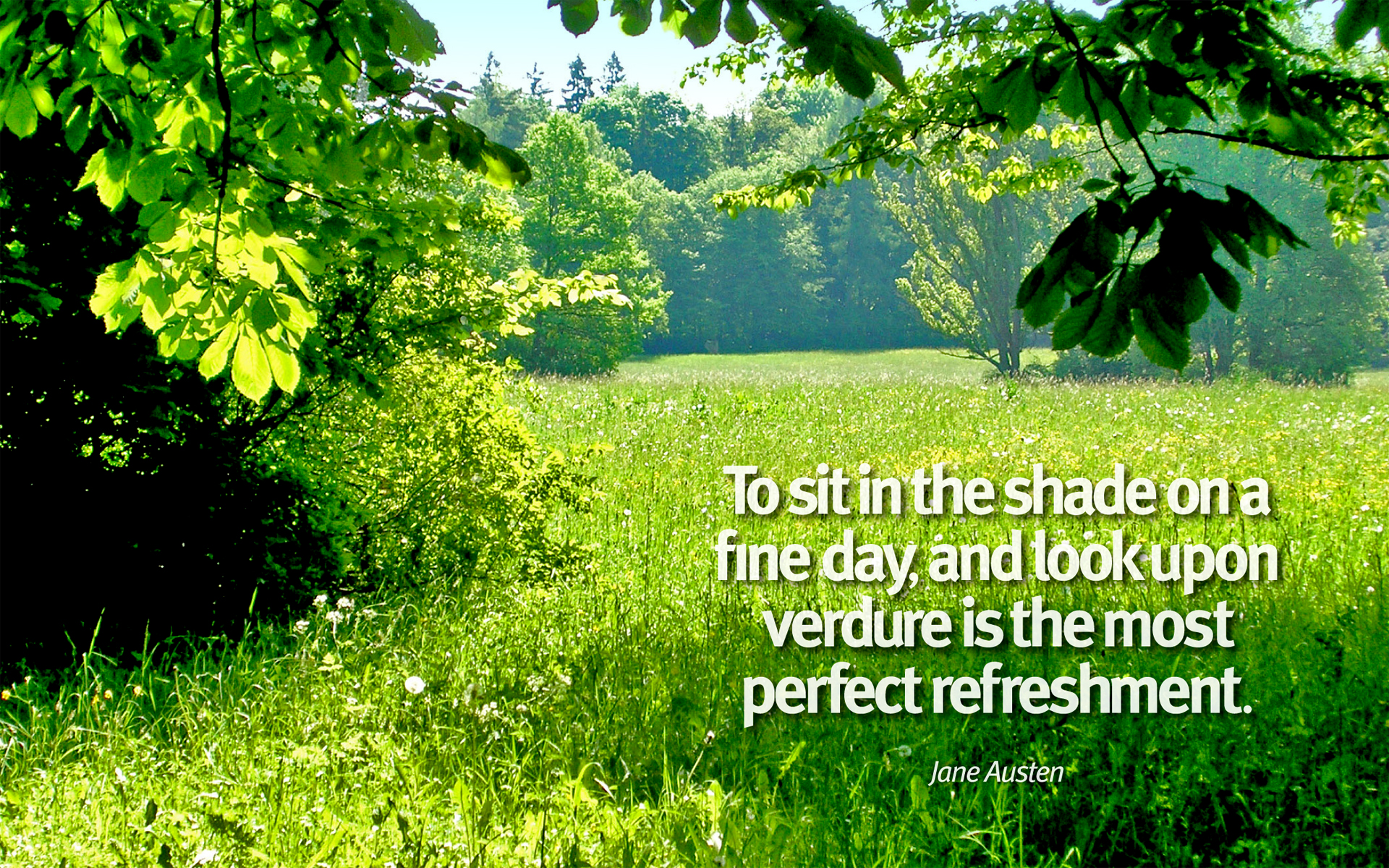 To sit in the shade on a fine day, and look upon verdure is the most perfect refreshment. — Jane Austen [1920×1200]