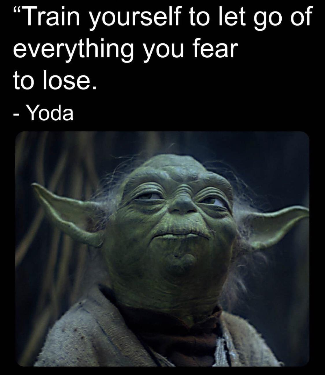 """""""Train yourself to let go of everything you fear to lose."""" -Yoda[1078×1032]"""