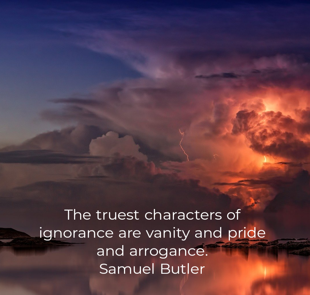 The truest characters of ignorance are vanity and pride and arrogance. Samuel Butler [1980×1030]