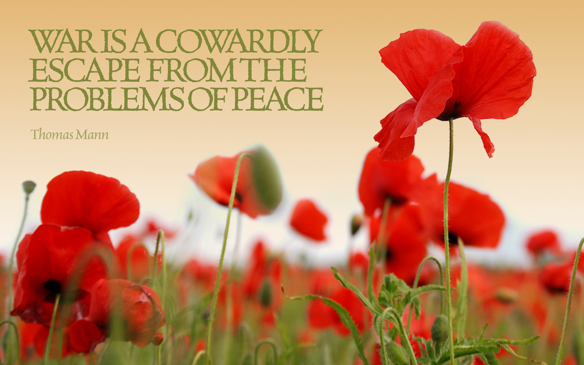 War is a cowardly escape from the problems of peace. — Thomas Mann [1920×1200]