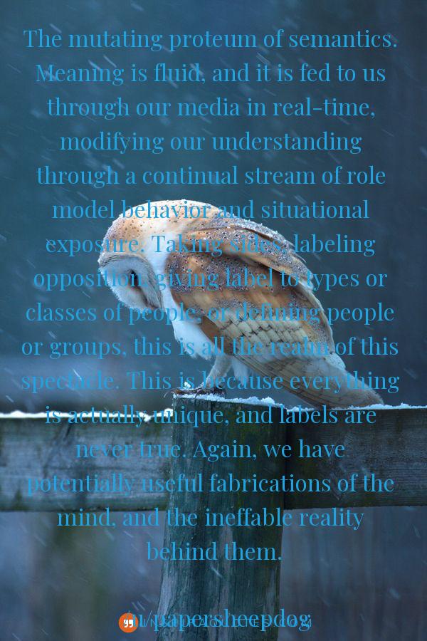 """The mutating proteum of semantics… "" – /u/papersheepdog [600×900]"