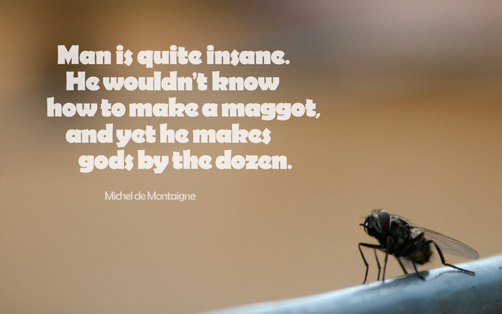 Man is quite insane. He wouldn't know how to make a maggot, and yet he makes gods by the dozen. — Michel de Montaigne [1920 x 1200]