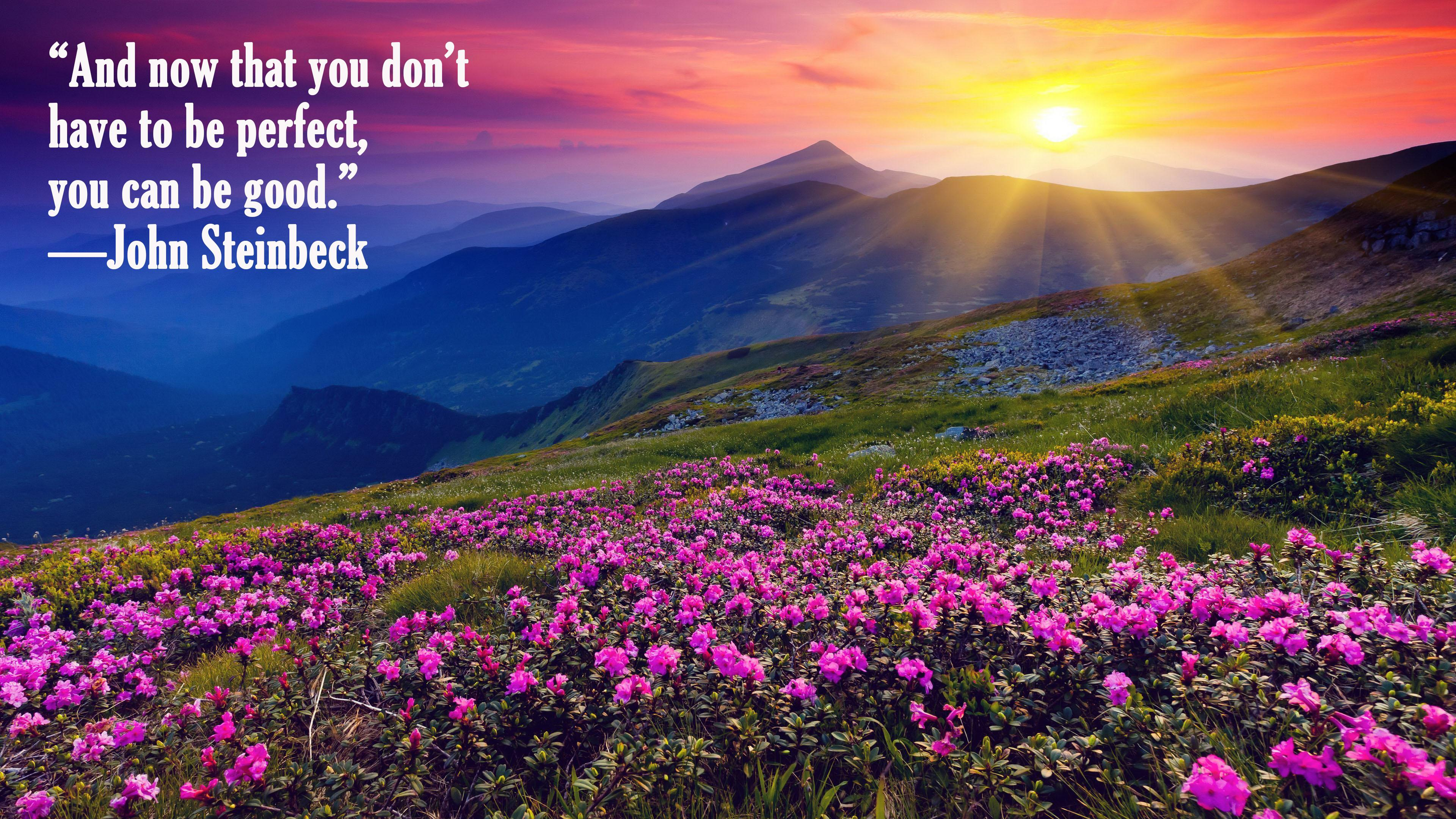 """""""And Now That You Don't Have To Be Perfect, You Can Be Good."""" —John Steinbeck https://inspirational.ly"""
