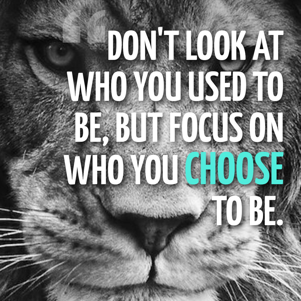 [image] Life is made of choices, make the right ones.