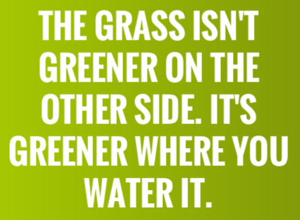 [image] Grass is greenest where you water it.