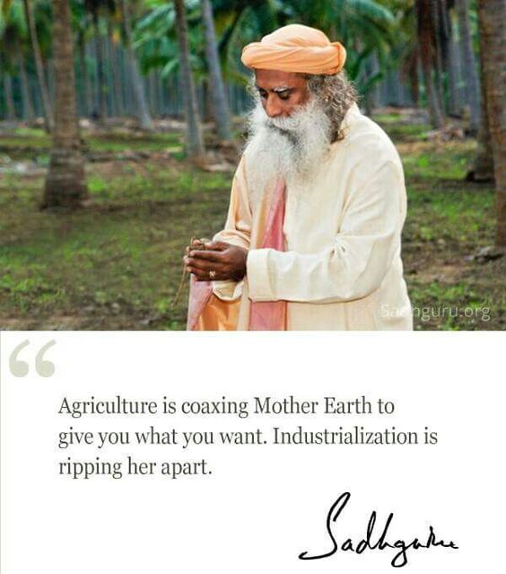 Agriculture is coaxing Mother Earth to give you what you want. Industrialization is ripping her apart – Sadhguru [600×680]