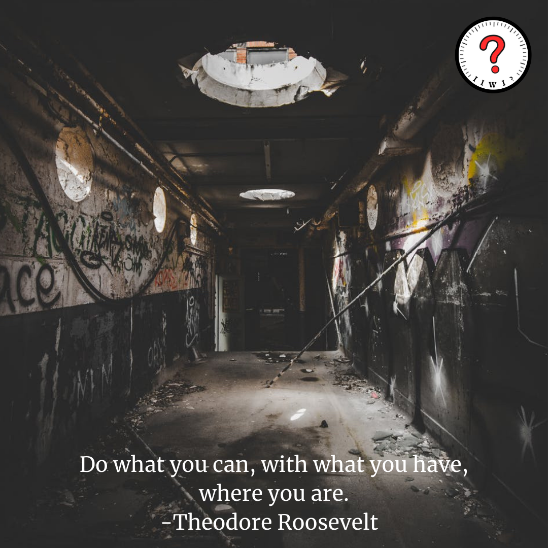 """""""Do what you can, with what you have, where you are."""" -Theodore Roosevelt [1250 x 1250] IG: isitworthitinc !"""