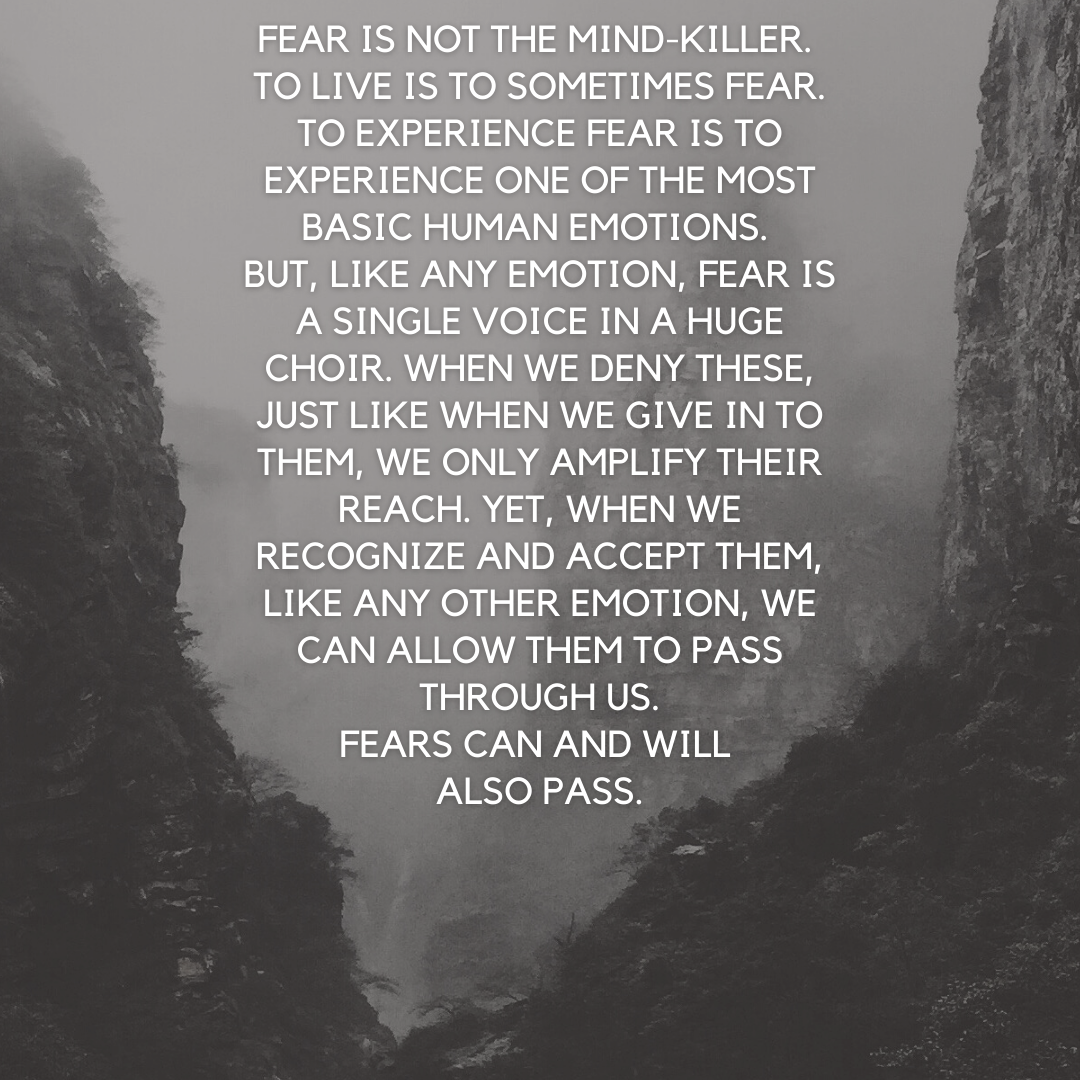 [Image] Fear is not the mind-killer.
