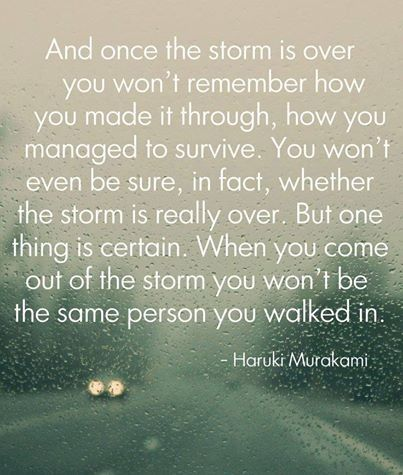 [IMAGE] Brave the storm.