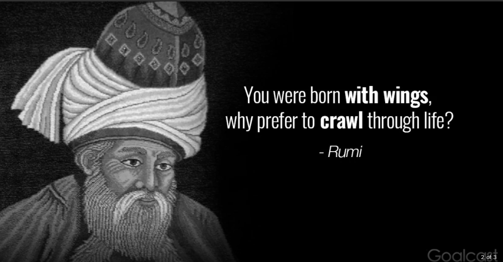 """""""You were born with wings, why prefer to crawl through life?"""" – Rumi [1033 X 539]"""