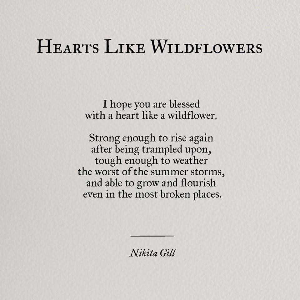 Hearts like wildflowers – Nikita Gills (960×960)