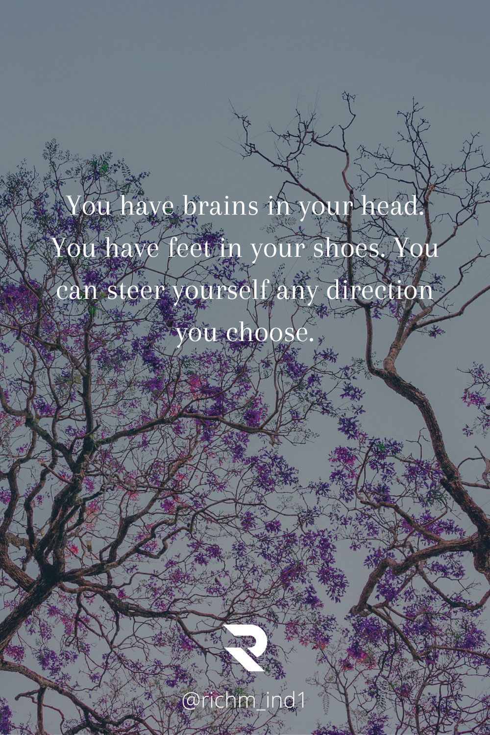 you have brain in your head[1980x 1080]