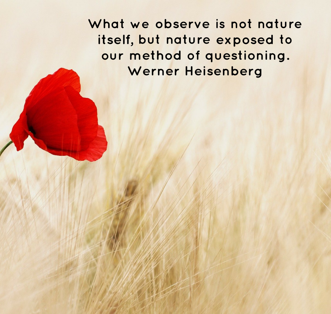 What we observe is not nature itself, but nature exposed to our method of questioning. Werner Heisenberg[1080×1024]