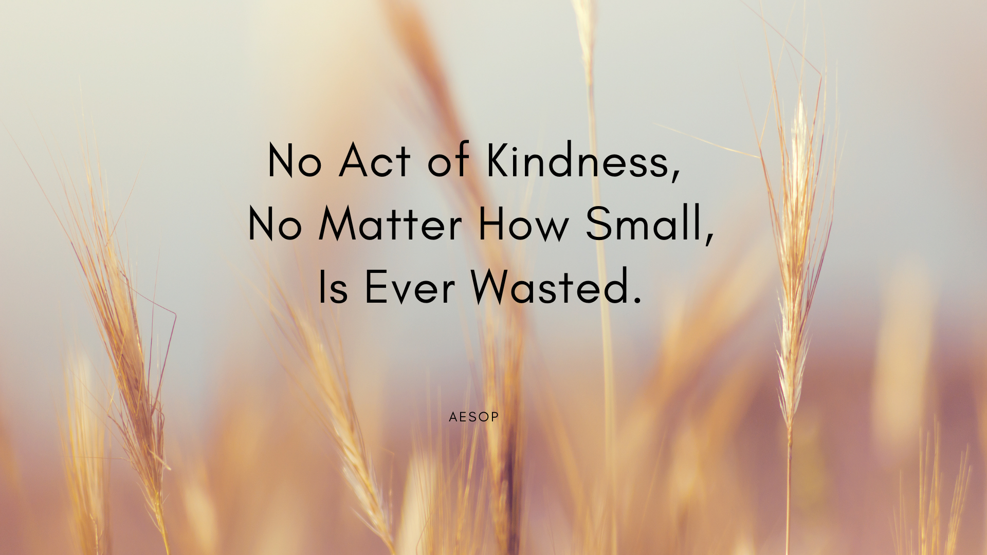 No Act of Kindness, No Matter How Small, Is Ever Wasted. – Aesop[1920×1080][OC]