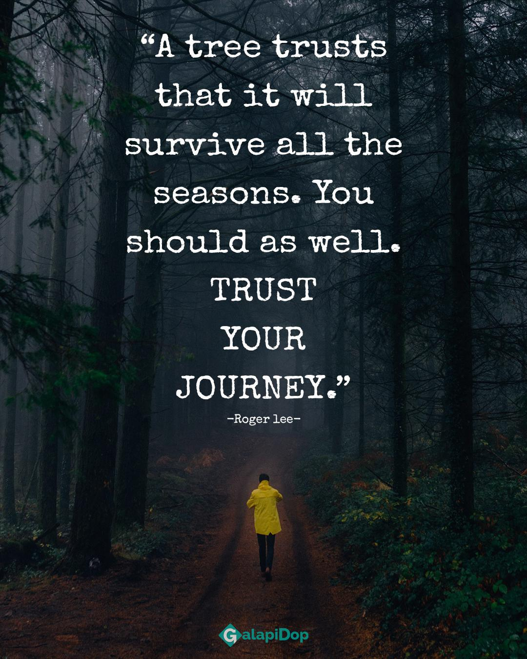 """.35 . """"A tree trusts that it Wlll survive all the seasons. You should as well. TRUST YOUR JOURNEY."""" -Roger lee- https://inspirational.ly"""