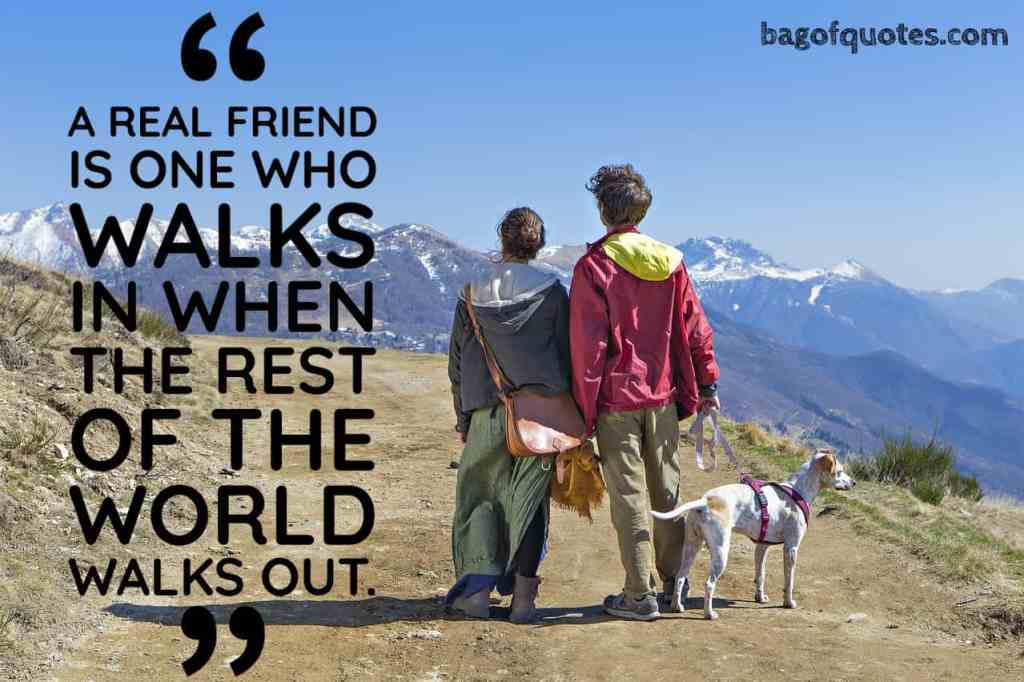 """""""A real friend is one who walks in when the rest of the world walks out"""" Walter Winchell (1080 X 980)"""