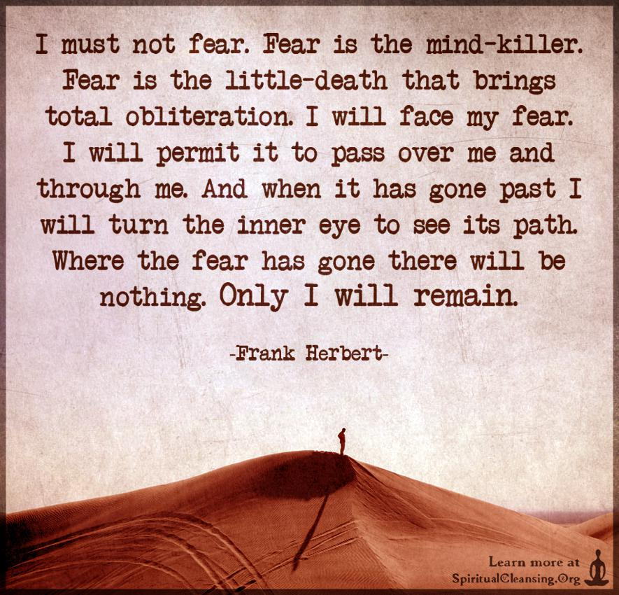 """I must not fear. Fear is the mind-killer."" – Frank Herbert [885*850]"