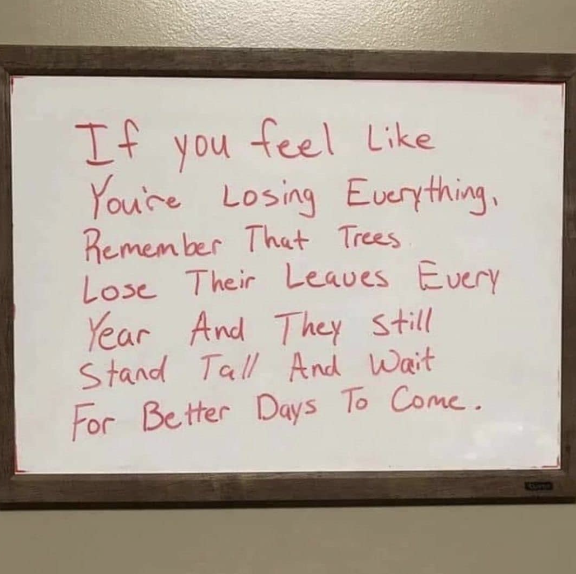 [Image] Never lose yourself. Things will get better, be patient.