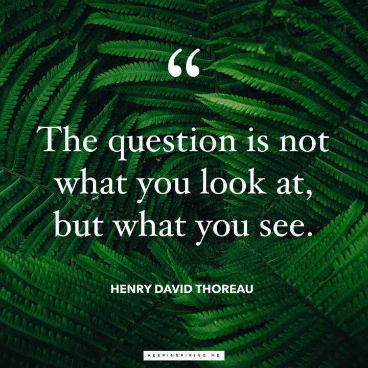 """""""The question is not what you look at, but what you see."""" -Henry David Thoreau [720×720]"""
